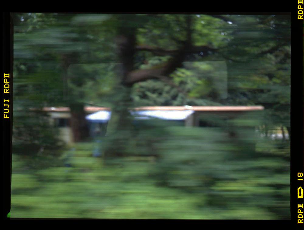 1 Garry oak woodland & trailer Langford e&n July 1996 Gordon Brent Ingram