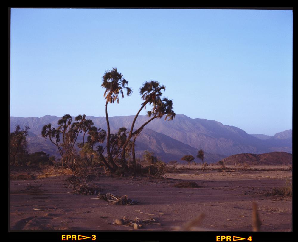 SW base of Bagzane Plateau west of Tabelot Air Mountains 2 Dec 1986 Gordon Brent Ingram