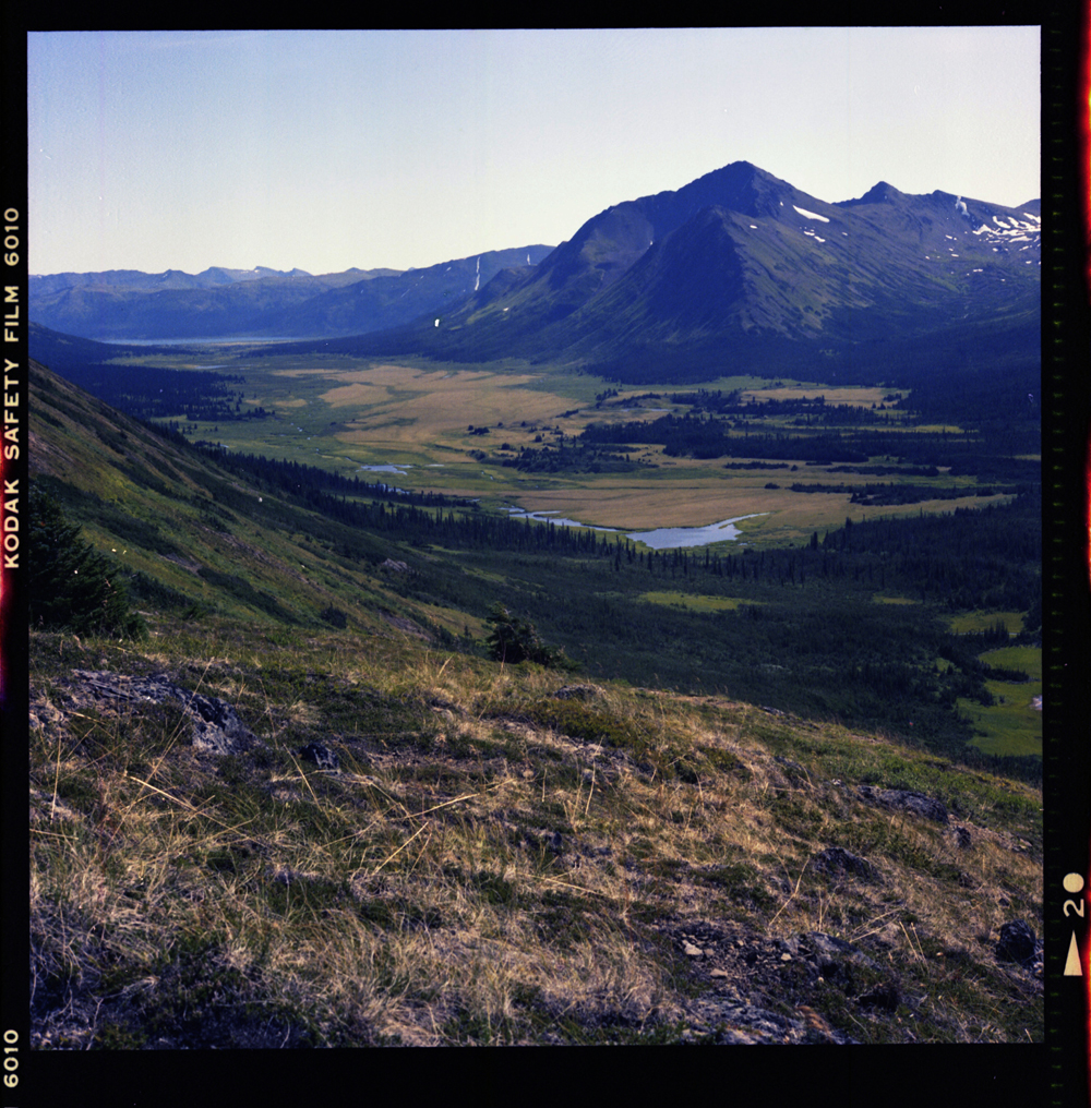 from ridge on the Ross - Stikine divide, Spatsizi, British Columbia August 1981 by Gordon Brent Ingram (small)