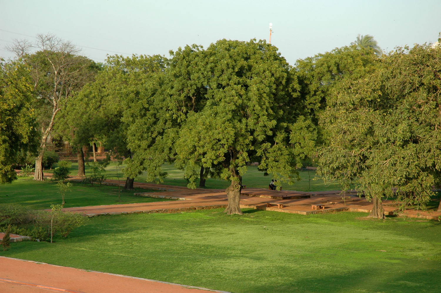 Trees in charbagh from the terrace of Humayun's Tomb complex, New Delhi, 5 March, 2007, photograph by Gordon Brent Ingram