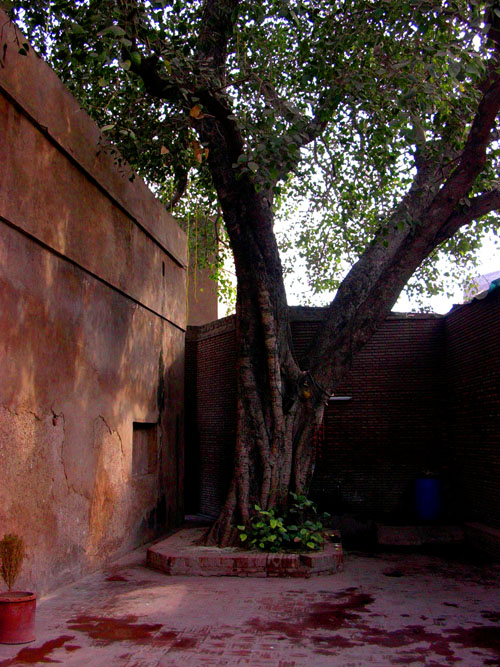 Courtyard with Hindu observances, garden of Wazir Khan Shahi Hammam, Lahore, Pakistan, 16 January, 2004 photograph by Gordon Brent Ingram
