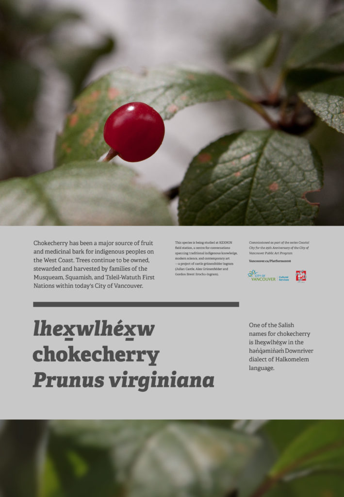 2016-sept-ihexwlhexw-chokecherry-castle_grunenfelder_ingram